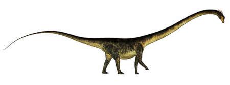 Barosaurus dinosaur - 3D render