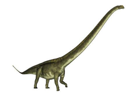 Mamenchisaurus dinosaur - 3D render