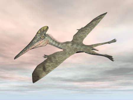 Pterodactylus prehistoric bird flying - 3D render