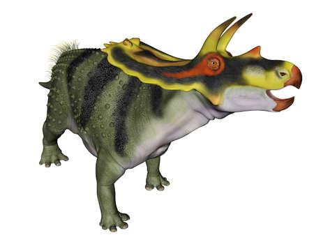 Anchiceratops dinosaur - 3D render