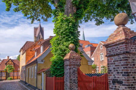 Street and houses in Ribe town, Denmark