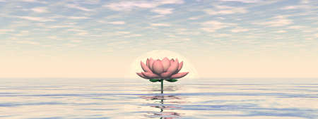 Lotus flower by sunset - 3D render Banque d'images - 158503889