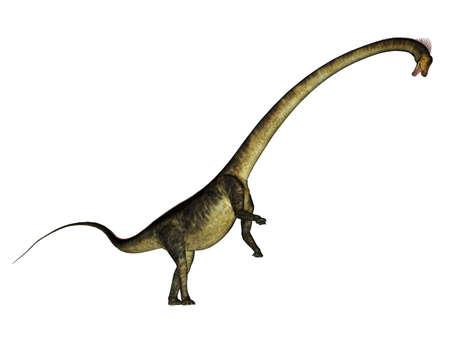 Barosaurus dinosaur rearing up - 3D render