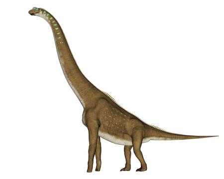 Giraffatitan dinosaur - 3D render