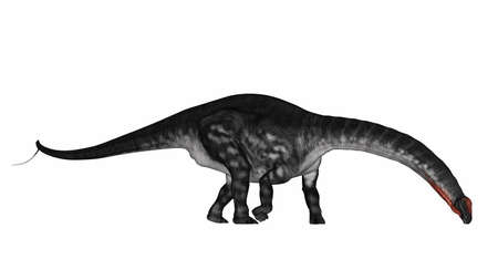 Apatosaurus dinosaur drinking or eating - 3D render Banque d'images