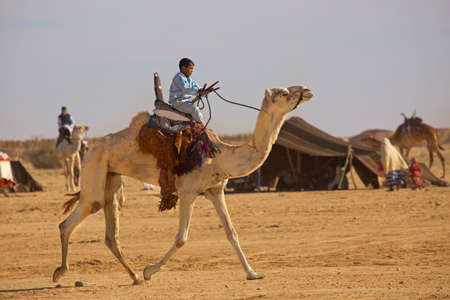 DOUZ, TUNISIA. 21 DECEMBER 2018. Festival of the Sahara in Douz, Tunisia.