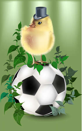 Football with green background,.