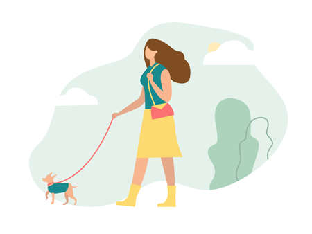 Fashion girl with bag is walking with Chihuahua in the green park. Green background with cloud and sun. Flat vector illustration. Illustration