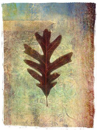 based:           Photo based mix media image of leaf.