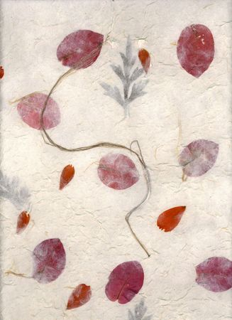 inclusions: Handmade paper with bouganvilla and fern inclusions.