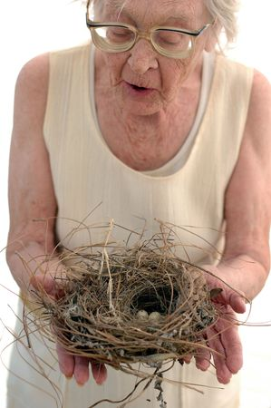 80: Nature Lover 80 year old woman with birds nest. Stock Photo