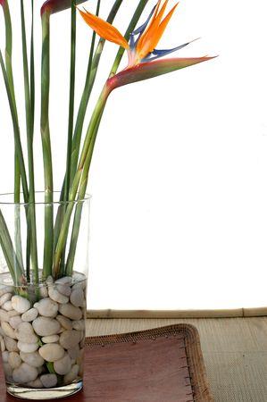 Bird Of Paradise bloemen op witte achtergrond zittend op een asian lade. Stockfoto