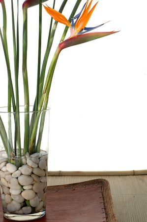 Bird Of Paradise flowers on white background sitting on a asian tray. Stock Photo - 275398