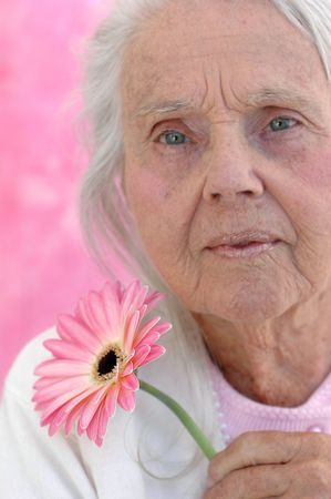 Great grandmother with a pink Gerbera flower, photographed on a pink background. Woman in her eighties.