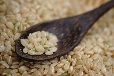 Uncooked brown rice in a natural wood spoon. Extreme shallow depth o focus.