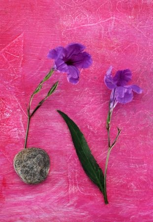 Two simple purple flowers and a stone photographed on a textural pink surface.