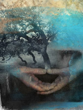 Mixed medium photo based illustration of hands in meditation with tree. Фото со стока
