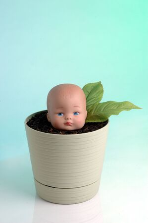 Plastic  head growing in a pot with soil. Stock Photo - 327585