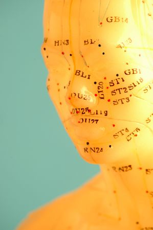 Cropped close up of an acupuncture model head. photo