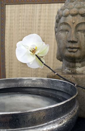 White orchid, basin of water, and the Buddha.