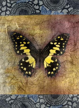 Gemengde medium afbeelding van een vlinder.