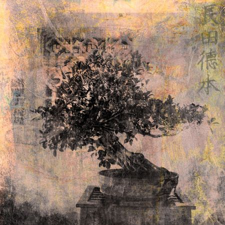 Chinese Bonsai tree. Photo based illustration.  illustration