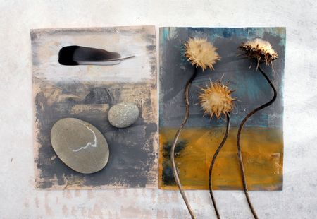 found: Thistles, feather, and stones photographed on painted surfaces.  Stock Photo
