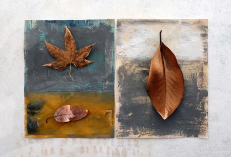 Natural still life with painted surfaces. Leaves including a Sycamore and a Magnolia photo