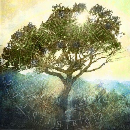산 근처 야생 나무를 통해 빛나는 태양. 거의 실루엣, 그림자 영역의 세부 사항. 고 대 점성술 차트 겹쳐입니다. 사진 기반 illustation입니다. 스톡 콘텐츠