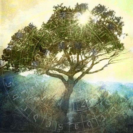 Sun shining through a wild tree near the mountains. Almost a silhouette, detail in shadow areas. Ancient astrology chart overlaid. Photo based illustation.  photo
