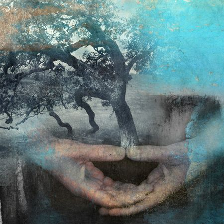 Mixed medium photo based illustration of hands in meditation with tree.