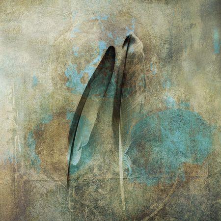 Two feathers. Photo based illustration.            Stock Photo
