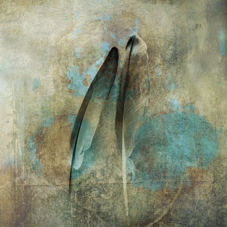 fallen: Two feathers. Photo based illustration.            Stock Photo