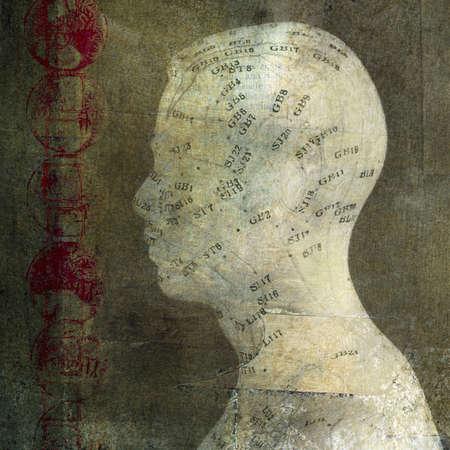 Acupunctuur hoofd. Foto gebaseerd illustratie.