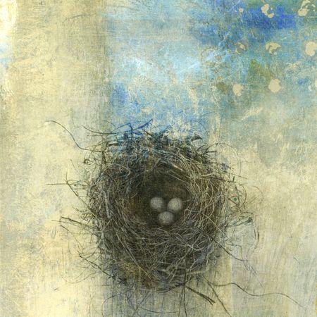 triplets: Birds nest with three eggs. Photo based illustration.