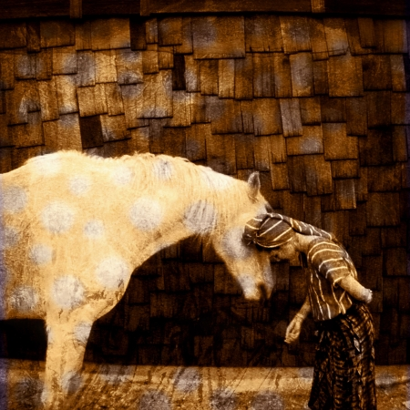 equal rights: Woman bowing into the horse language realm. Photo based illustration.