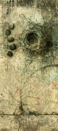 memory loss: A birds nest with some small river stones photo based illustration.