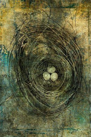 3 つの卵と巣。写真に基づく図。 写真素材
