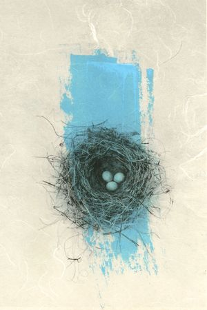 triplets: Photo print of a birds nest on Japanese paper with a brush of  blue paint.
