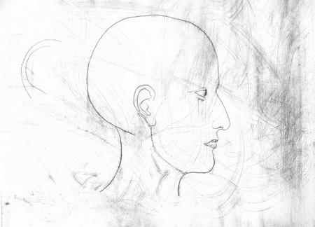 대머리 머리의 스케치입니다. 스톡 콘텐츠