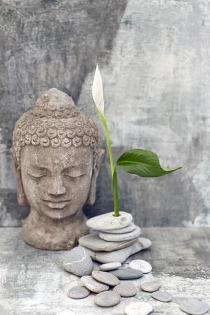 mente humana: Escultura de piedra de Buda cabeza fotografiado con una flor blanca y piedras
