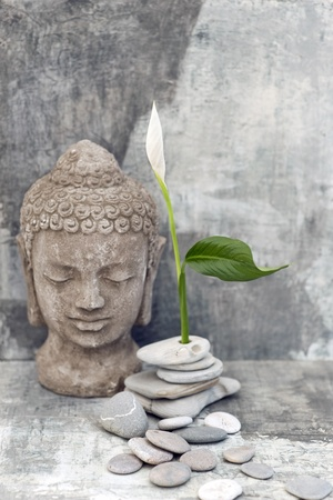 Stenen Boeddha hoofd sculptuur gefotografeerd met een witte bloem en stenen Stockfoto