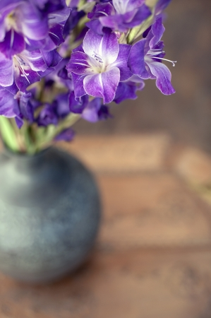 Gladiolas in a vase close-up   Foto de archivo