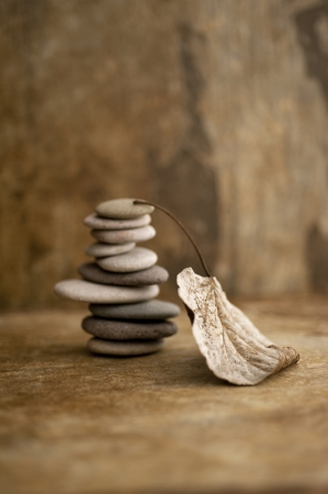 Stacked stones and a fallen leaf in a earth toned setting   Banque d'images