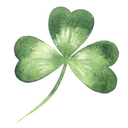 trifolium: Clover leaf - trefoil. Watercolor vector illustration. Patricks Day design element.