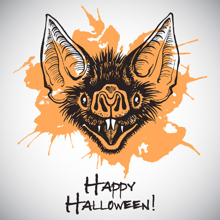 bared: Bat head halloween illustration card. Ink drawing with orange blot. Vampire bat muzzle with open mouth and bared fangs. Grinning desmodus snout with halloween greetings and grunge splash.