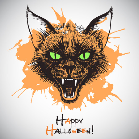 bared: Happy Halloween illustration. Cats head. Scary black cat with open mouth and bared fangs. Ink drawing with colorful blot. Grinning cats muzzle with grunge splash. Illustration