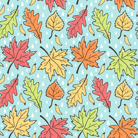 fall leaves background: Fall seamless vector pattern. Various autumn leaves, maple seeds and raindrops. Hand drawn ink outline. Leaf-fall with rain background. Colorful. Illustration