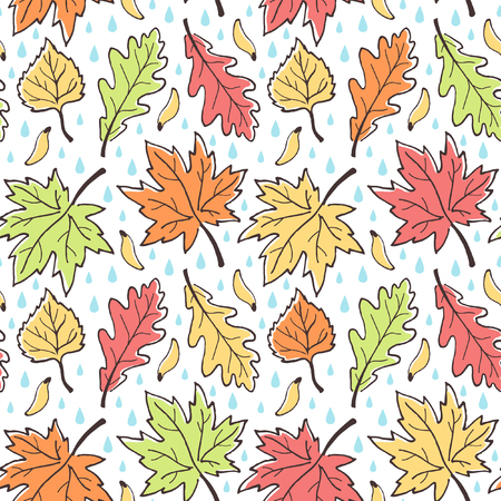 linden tree: Fall seamless vector pattern. Various autumn leaves, maple seeds and raindrops. Hand drawn ink outline. Leaf-fall with rain background. Colorful. Illustration
