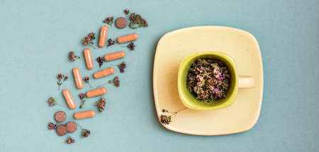 Medicinal capsules, pills and herbs in the form of a branch on a green background and a cup with oregano. Alternative medicine. Top view. Web banner